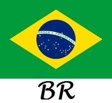 DRAPEAU BRESILIEN 1